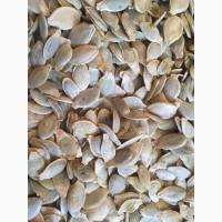 Семечки тыквы, сушеные
