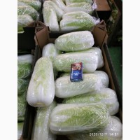 Продам капуста пекинская оптом
