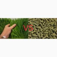 Витаминно травяная мука в гранулах РФ