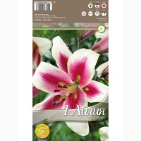 Лилия Altari 1 шт/уп р.14-16, каперс 308268