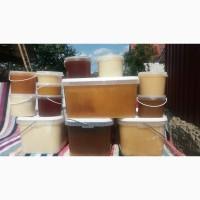 Продам мёд натуральный оптом