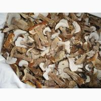 Купить боровики в Минске. Белые грибы