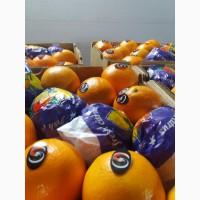 Продам Апельсины ОПТ