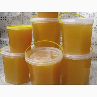 Экологически чистый мед с собственной пасеки