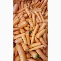 Нестандарт мытой моркови (лом)