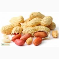 Продам арахис оптом