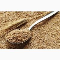 Фирма Yukon Transit закупит пшеничные отруби на ЭКСПОРТ