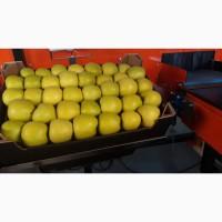 Продам яблоки с холдильика