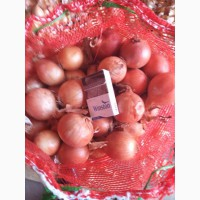 Продам лук репчатый, морковь, картофель