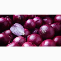 Selling Fresh Onion Best Prices +4536992142