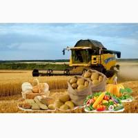 Агентские услуги по поиску оптового клиента на сельхозпродукцию. Специалист по продажам