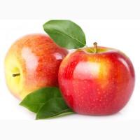 Доска объявлений гродно яблоки из рук в руки подать объявление г пермь