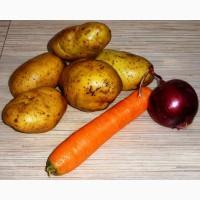 Куплю картофель, свеклу, морковь