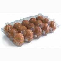 Премиальные качественные коричневые куриные яйца