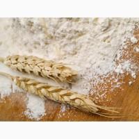 Куплю Белорусскую муку пшеничную фасовка/вес, 54-28, 54-25, 1с, 2с, . дисконт