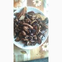 Белые сушеные грибы в печи