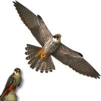 Отпугиватель птиц профиль Хищник 2 пластиковый 32 x 80 см