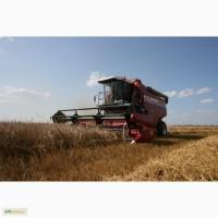 Продам комбайн зерноуборочный КЗС-10К ПАЛЕССЕ GS10