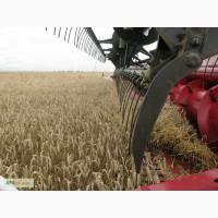Продам комбайны зерноуборочные КЗС-1420 ПАЛЕССЕ GS14